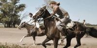 Gaucho - Sortija Horse Show