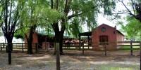 Horse Boxes - Caballeriza